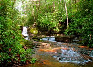 Georgia Hiking