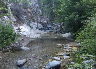 Hiking Trips for Beginners