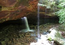 Best Hiking Trails in Arkansas