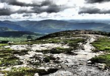 Bald Face Trail in New Hampshire